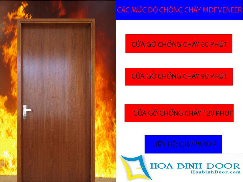 Cửa gỗ công nghiệp chống cháy MDF veneer tại vũng tàu